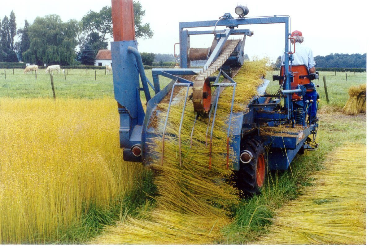 Faay Wanden en Plafonds - Duurzaam bouwen met vlas - Vlasveld tractor
