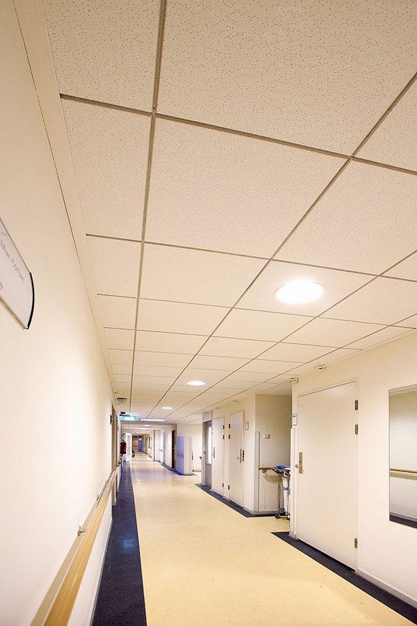 Faay Wanden en Plafonds - Separatiewanden ecologisch duurzaam - Plafond
